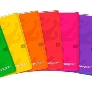 Livraison à domicile de cahier easybook agrafe 170x220 48 pages 90g seyes assorti Chez Rentrée facile