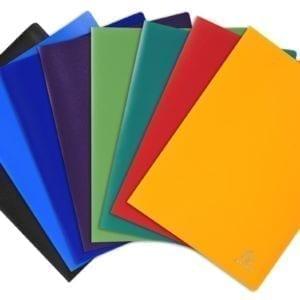 Livraison à domicile de Protège-documents en polypropylène souple pochettes grainées opaque 40 vues - A4 Chez Rentrée facile