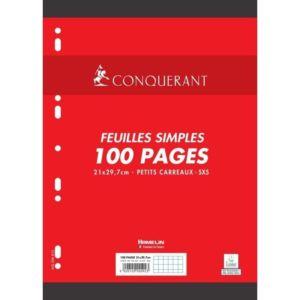 hamelin-feuillets-mobiles-21x297-cm-100-pages-petits-carreaux-blancs-90g