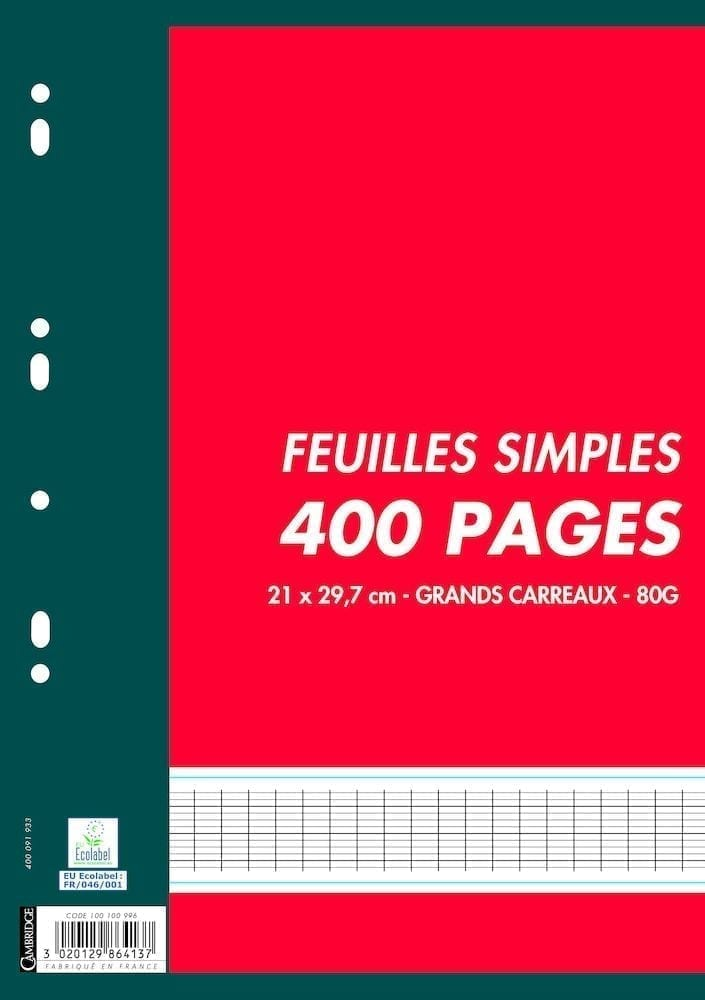 Lot X 400 Pages Mobiles 80g Grands Carreaux Seyes